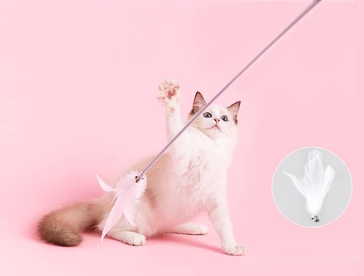 catstick02.jpg